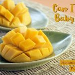 Can-I-Give-my-Toddler-Mango