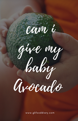 Can I give my Baby Avocado