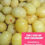Can I give My baby Gooseberry
