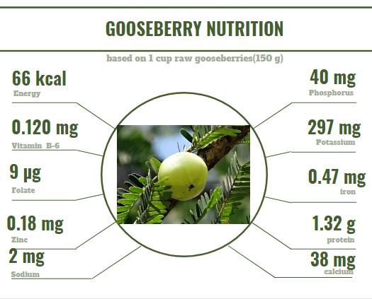 GooseBerry Nutrition
